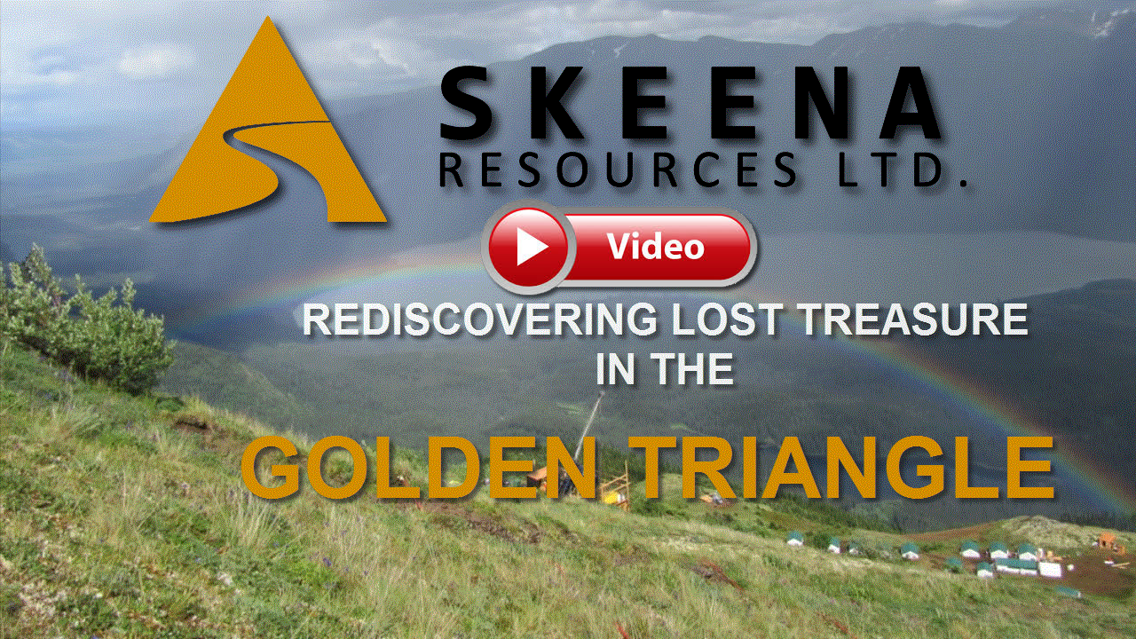 Skeena Resources